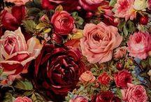 Florais - Print & Pattern