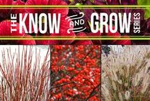 Know and Grow Series / Want to learn about how you can DIY a specific gardening topic? If so, you've come to the right place! Each topic shown here will take you to a quick, how-to page with gardening tips and ideas for you to try in your garden this coming season. / by Proven Winners Plants