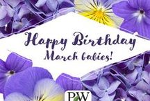 Birth Month Flowers / Celebrate your birthday by enjoying the beautiful colors of the flowers that are special to the month in which you were born!