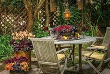 Rustic Luxury / Create a cozy place to sit and daydream by surrounding yourself with repurposed antique containers and luxurious, fluffy pillows on which to rest your head on a lazy Sunday afternoon. Old doors, shelves, lanterns and other found items can be repurposed to set the scene for a quaint outdoor space filled with bountiful blooms. Find inspiration for your next DIY decorating project right here.  / by Proven Winners Plants