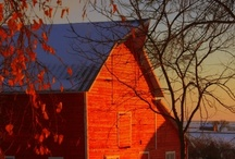 BARNS / My ancestors were farmers in Michigan - must be where my love for barns comes from.