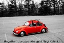 VW Beetle 1932-1974 / A Picture Review of the Volkswagen Beetle From 1932 to 1974