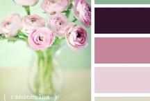 COLOR PALETTES / #color palettes