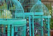 BIRDCAGES / #birdcage I love old weathered bird cages and they are beautiful accents anywhere in the home (inside and out!)