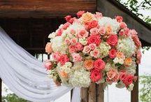 Floral inspiration / by Kristen Moran