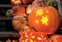 Halloween / by Kathy Shafer-Francis