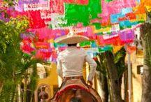 Latin America & The Caribbean
