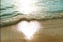 ~Ocean Love~