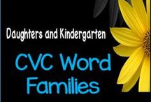 CVC Word Families / Build emergent reading skills with #CVC word family worksheets, center activities, sound boxes, emergent readers, posters, word cards, and weekly assessments.