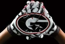 GO DAWGS!! / by Stevie Leigh