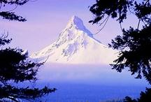 PURPLE MOUNTAIN MAJESTIES! / by Brenda Fryburger