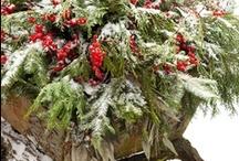 Love Love Christmas / by Dee Williams