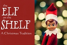 ELF ON A SHELF!