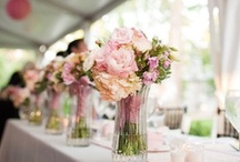 Wedding Ideas / Anything and everything wedding related!