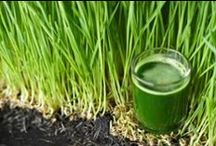 Green Goodness / So many #green superfoods to choose from for optimal health!