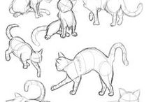 Draw Animals / How to draw cats and dogs