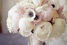 floral design flowery prettiness / by Carolyn Egerszegi