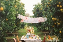 Tangerine Picnic / Orange themed picnic. / by Jessica Farber