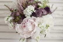 Purple and Gray Wedding / Lavender and wine themed weddings. / by Jessica Farber