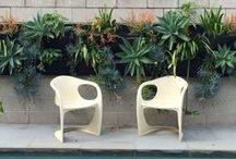 Vertical Gardens by My Verandah / Vertical Gardens