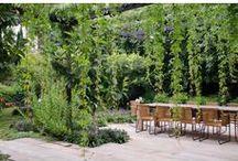 Ideas for Bardon 2 / Garden Design