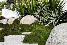 Ideas for Newmarket / Garden Design