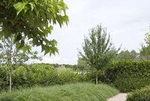 Ideas for Bardon 3 / Garden Design