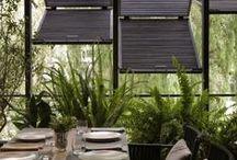 Ideas for Crescent Road / Garden design