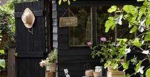 Ideas for Bethania Street / Garden design