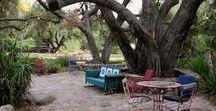 Ideas for Kennedy Tce / Garden design