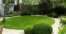 Ideas for Gordon Street / Garden design
