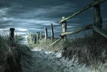 Roads, Bridges & Paths / by Jeanne Caras