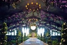 Wedding Ideas / by Angie Seivers