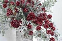Elegant Flower Arrangements / by Jeanne Caras