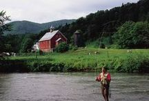 Nordic / Researching The Scandinavian and neighbouring Nordic countries with purpose.