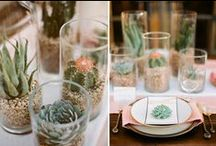 tablescapes / by Amy Krueger