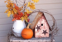 Thanksgiving and Fall Ideas / Everything Fall and Thanksgiving. Love the change of seasons!