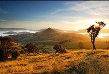 New Zealand / by John Bain