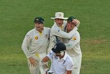 2013-14 Ashes Test Series: In Pictures.. / A look back on all the action from the 2013-14 Ashes Test Series in Australia, as seen through the lens... C'mon Aussie, c'mon, c'mon...