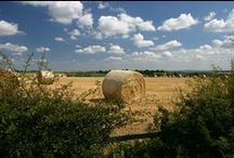 Rural living - Worcestershire / Life with the countryside on your doorstep