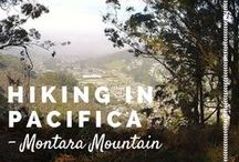 • Northern California Day Trips • / Northern California day trips. Norcal // Pacific Ocean. Sights. Hiking. Activities.