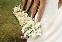 Wedding Photography / by Debra Cradick