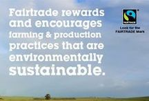 What Is Fair Trade? / To live honestly, green, & consume responsibly.