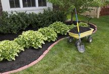 Gardening and Outdoor Ideas / by Lydia Keller