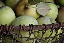 Apples and Orchards / by Candi Fry