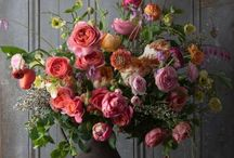 Flower and Floral Inspirations / by Lisa Narramore