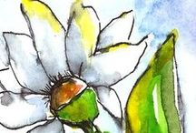 Flowers, Floral Paintings by Penny StewArt / Painted Florals done in both Acrylics and Watercolor and pen.  Mixed media.  Flowers are so freeing.  I like to paint quickly, and flora and fauna seem to be easy for me.  Sketches, paintings and still life posies. Posted and Painted by Penny Lee StewArt http://www.craftylady.com www.pennyleestewart.com