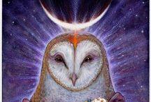 TRUSTING OWL