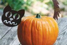 Halloween / by April Bauknight