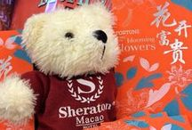 Sheraton Bear Stories / Let Us Share Our Stories with Our Lovely Sheraton Teddy